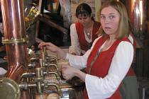 Letošní teplé a suché jaro pomáhá pivovarům na Vysočině.