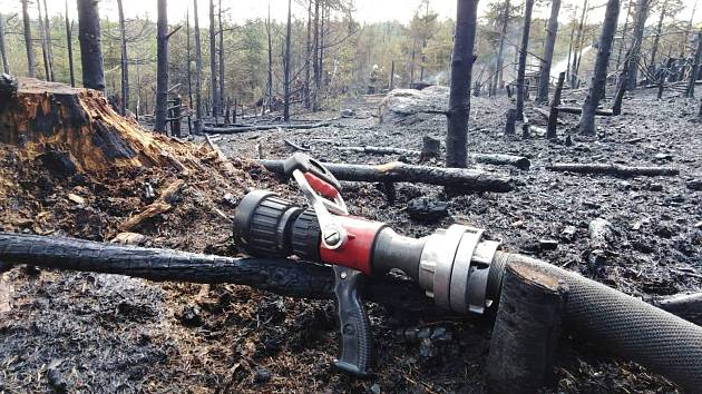 Požár lesa, ilustrační foto.