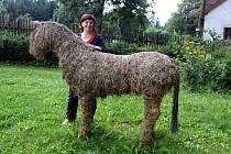 """Její výrobky mohou obdivovat lidé na jarmarcích, ale také v Horáckém muzeu v Novém Městě na Moravě a na jiných místech. A také  na její zahradě, na které se """"pase"""" kůň ze sena v životní velikosti."""