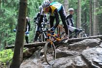 Gigantic Drop - právě tak se jmenuje obtížný skok mezi stromy na trati pro světový pohár horských kol v Novém Městě na Moravě.  V neděli se po ní mohla projet i veřejnost v doprovodu trénujících závodníků.