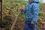 Nově vysazené aleje i remízy zpestřují krajinu a poskytují úkryt pro živočichy. Letos přibylo 120 stromů u Polničky na Žďársku.