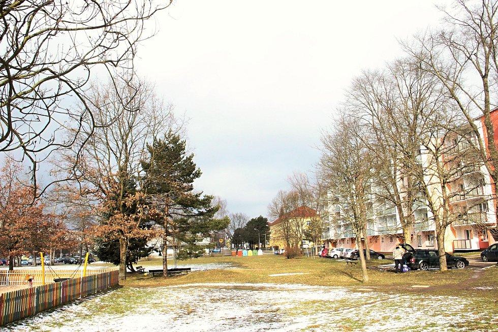 Veřejná zeleň se dočká obnovy také na sídlišti kolem ulice Neumannova.