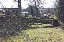Vichřice způsobila ve Vojnově Městci vyvrácení a pád čtyř stromů. Vzrostlé dřeviny zahradily cestu v části Kačín a poškodily plot. Padlé stromy odstranili vojnoměstečtí dobrovolní hasiči. Během jejich zásahu se znovu zvedl silný vítr a zkáze neušel další