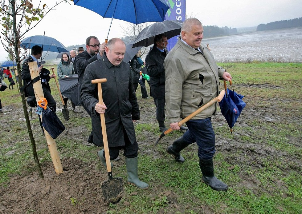 Prezident Miloš Zeman s hejtmany, Constantinem Kinským a novoveselským starostou vysadili u Veselského rybníka stromořadí dubů.