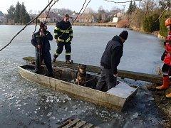 Žďárští a jamští hasiči v sobotu zachránili psa, který se topil v rybníku v Jámách. Přes led se k němu museli probourat.