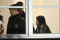 Ženu, která ubodala ve Žďáru nad Sázavou studenta a další tři lidi zranila, policie obvinila z vraždy a braní rukojmích. Hrozí jí 15 až 20 let vězení i výjimečný trest.