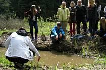 V lokalitě Hrnečnice u Nového Města na Moravě, kde se nacházejí i uměle vytvořené tůně, pracuje mimo jiné ekotým tamní první základní školy.