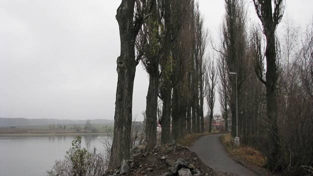 Některé ze stromů vysadili místní coby památku na skončení druhé světové války