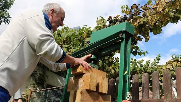 Manželé Chalupovi pěstují vinnou révu v Bohdalci už od roku 2007.
