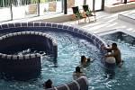 Městské lázně v Novém Městě na Moravě jsou oblíbeným místem pro relaxaci.