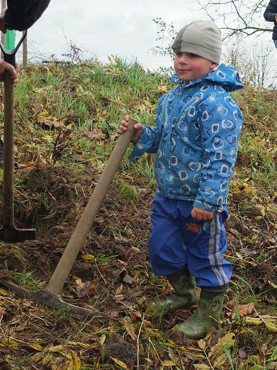 Tradiční podzimní výsadba dřevin.