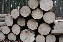 Žďárská společnost vlastní  pět tisíc sedm set hektarů lesů.