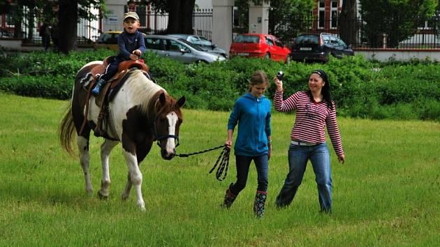 Rodinný víkend s koňmi při Black Angus Championship 2013.