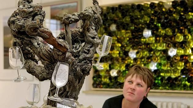 Malebná krajina, milí lidé a skvělé víno to jsou základní atributy malého kousku země, který přibližuje nová výstava v Regionálním muzeu města Žďáru nad Sázavou.