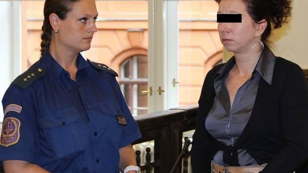 Matka ze Žďárska se přiznala k vraždě svého tříletého syna.