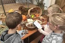 Podzimní prázdniny si mohou děti užít  v Krátké u Sněžného