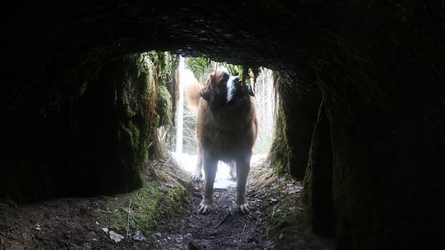 Babí díra nebo Milovská štola? Tajemná podzemní chodba u Křižánek má dvě jména