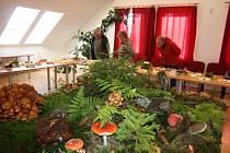 Na tradiční výstavě hub se návštěvníci seznamují nejen s hřiby, muchomůrkami a holubinkami, které jsou v lesích pravidelně k vidění, ale také s mnohými raritami.