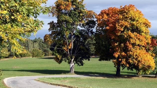 Barevný podzim bude v několika příštích dnech převážně slunečný, v pondělí může přijít občasný déšť.
