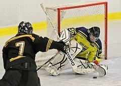 ZVLÁDLI TO. Hokejisté Velké Bíteše (ve žlutém) si na poslední chvíli zajistili účast v play off.
