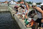 Netínské děti mají každou středu o zábavu postaráno. Foto: Archiv obce Netín