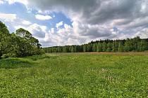 O vyhlášení lokality u Milov na Novoměstsku přírodní památkou usilují ochranáři již od sedmdesátých let minulého století. Nyní by se jim to již mělo podařit, návrh chtějí podat ještě v tomto roce.