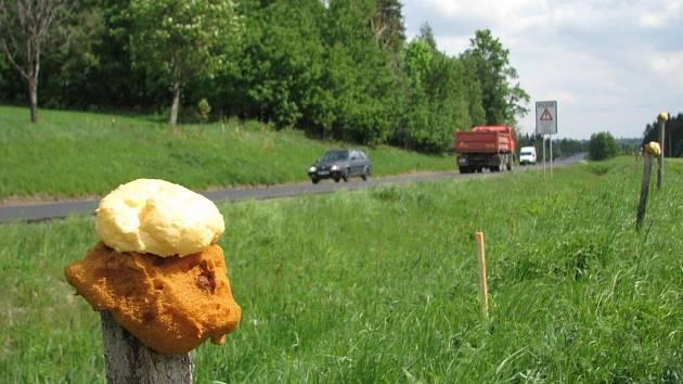 Jedním ze způsobů, jak zvěř dostat od frekventovaných silnic, je chemický ohradník.