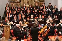 Filharmonii Gustava Mahlera tvoří profesionální hudebníci z Vysočiny, kde je jediná svého druhu.