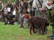 Na podzimní zkoušky ohařů a ostatních plemen v Radňovsi dorazilo v sobotu 15. září celkem čtyřiadvacet loveckých psů.