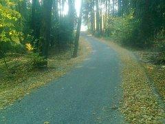 Lesní cesta, již hojně využívají nejen lesníci, ale i chataři, cyklisté a turisté, byla před opravou plná výmolů. Nyní dostala nový povrch.