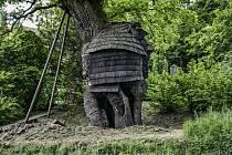 Žižkův dub.