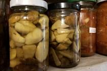 Obliba hub stále trvá. A houbových receptů přibývá.