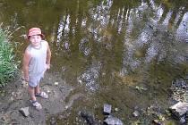 Desetiletý Jan Pařízek jezdí do Balin na prázdniny. Na snímku ukazuje místo, kde se, i přes vysychající koryto, objevují ryby.