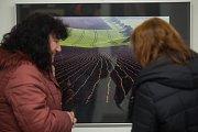 Vernisáž výstavy Photographia Natura 2017 v Horácké galerii v Novém Městě na Moravě.
