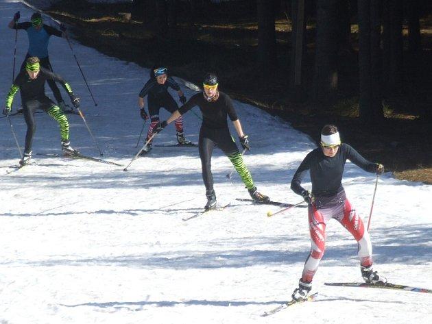 Sníh ve Vysočina areně pod náporem jarního slunce rychle mizí. Poslední šanci k lyžování mají sportovci v krátkém úseku sousedního lesa Plačkovec, kde dosud také trénují členové novoměstského sportovního klubu.
