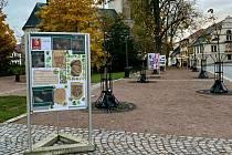 Výstavou v parku oslaví výročí. Přijďte se podívat
