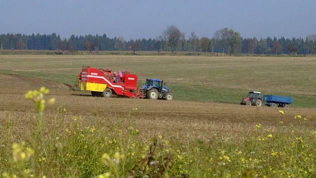 V těchto dnech na Žďársku vrcholí sklizeň brambor, o víkendu byly zemědělské stroje k vidění například v okolí obce Bohdalec.