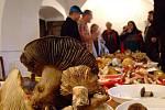 Hřib sametový, borový, pýchavka obecná, hřib kovář, liška obecná nebo václavka. To je jenom nepatrný výčet relativně běžných druhů hub Žďárských vrchů, které si bylo možné o víkendu prohlédnout na výstavě v Krátké.