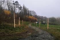 Domácí hospic Vysočina zakončil rok vysázením třešňové aleje pod Třemi kříži