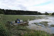 Vtento okamžik je již většina rákosin na rybníce posečených a probíhá jejich vyklízení na břeh.