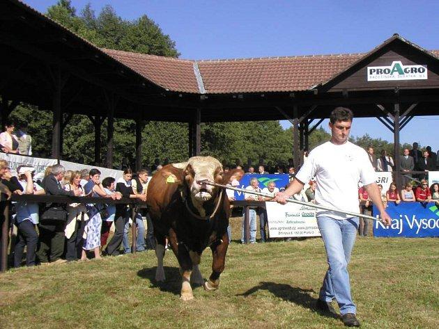 Farmáři na Vysočině chtějí čelit poklesu produkce masa a plodin výrobou energií.