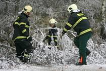 Popadané stromy přidělaly práci hasičům.