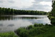 Rybník Svratka.