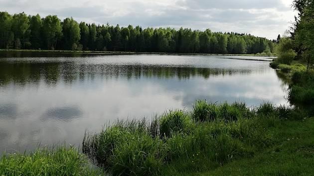 Rybník Svratka čeká po výlovu odbahnění. Zbývá jen získat dotaci