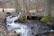Poškozený pozoruhodný mostek ručně složený z plochých kamenů na turistické stezce asi půl kilometru za Chlébským je nyní pro návštěvníky rezervace neprůchodný.