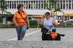 Výcvik vodících psů pro nevidomé v centru Žďáru nad Sázavou.