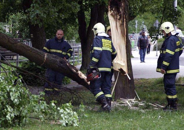 Hasiči měli na Žďársku kvůli větru spoustu práce s padlými stromy. Ilustrační foto.