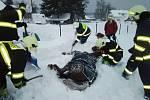 Kůň lehl do závěje a nemohl vstát. Pomohli mu dobrovolní hasiči.