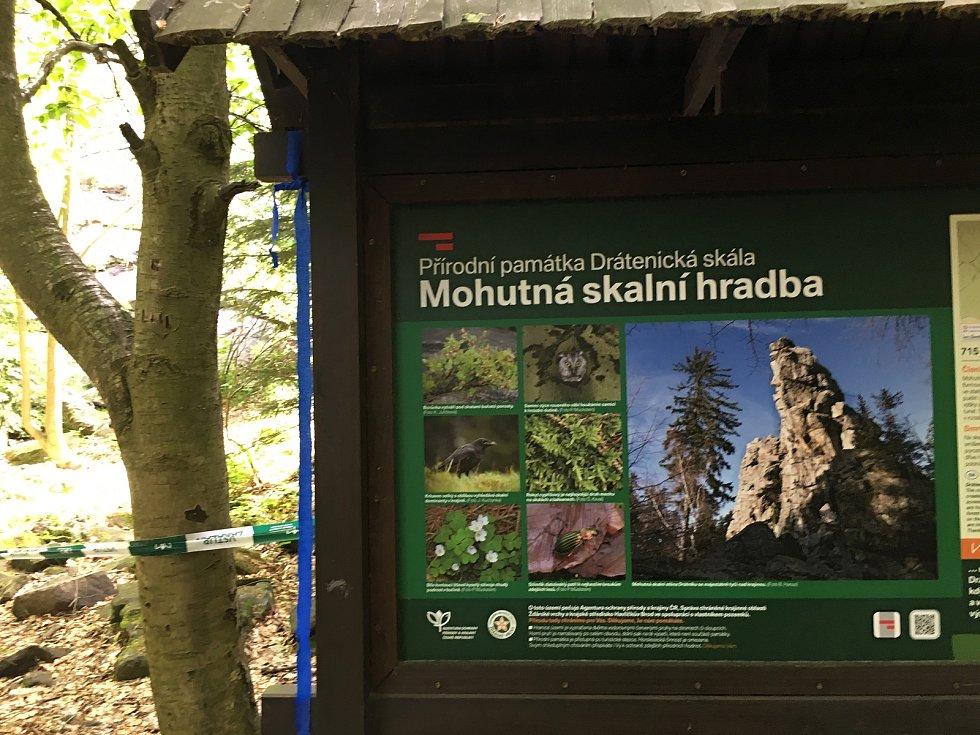 Zakázané území je ohraničeno páskou. Lidé by tam neměli vstupovat, aby krkavce při jejich hnízdění nerušili.