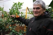 Petr Broža z Moravce je mistrem v pěstování exotických rostlin.
